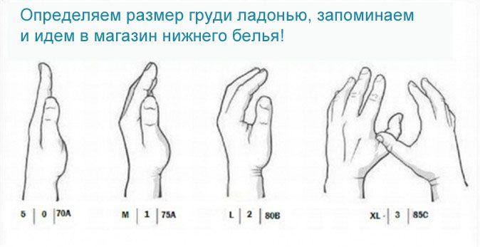 Параметри третього розміру грудей. Як правильно виміряти груди ... bc0bef395fc04